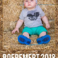 Boeremert2018 (68)